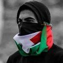hashim arab (@0592575837) Twitter