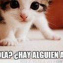Nico Acevedo (@0320Nikito) Twitter