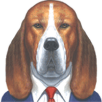 SalesDog | Social Profile