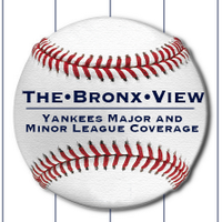 The Bronx View