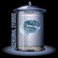Cerebral Studios