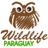 Wildlife Paraguay Tour Operator