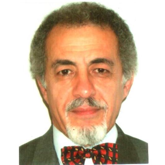 M.Reza Massali