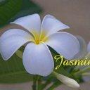 JASMINE (@01jasmine30) Twitter