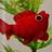 @wakin@biwakodon.com's icon