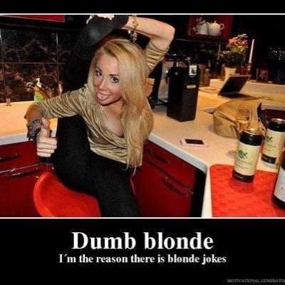 A Lot Of Blonde Jokes 109