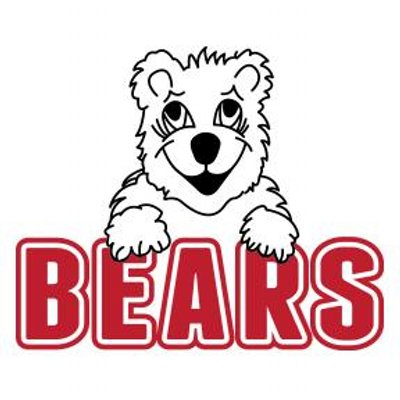 Image result for north school brownie the bear