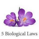 5 Biological Laws (@5biologicallaws) Twitter