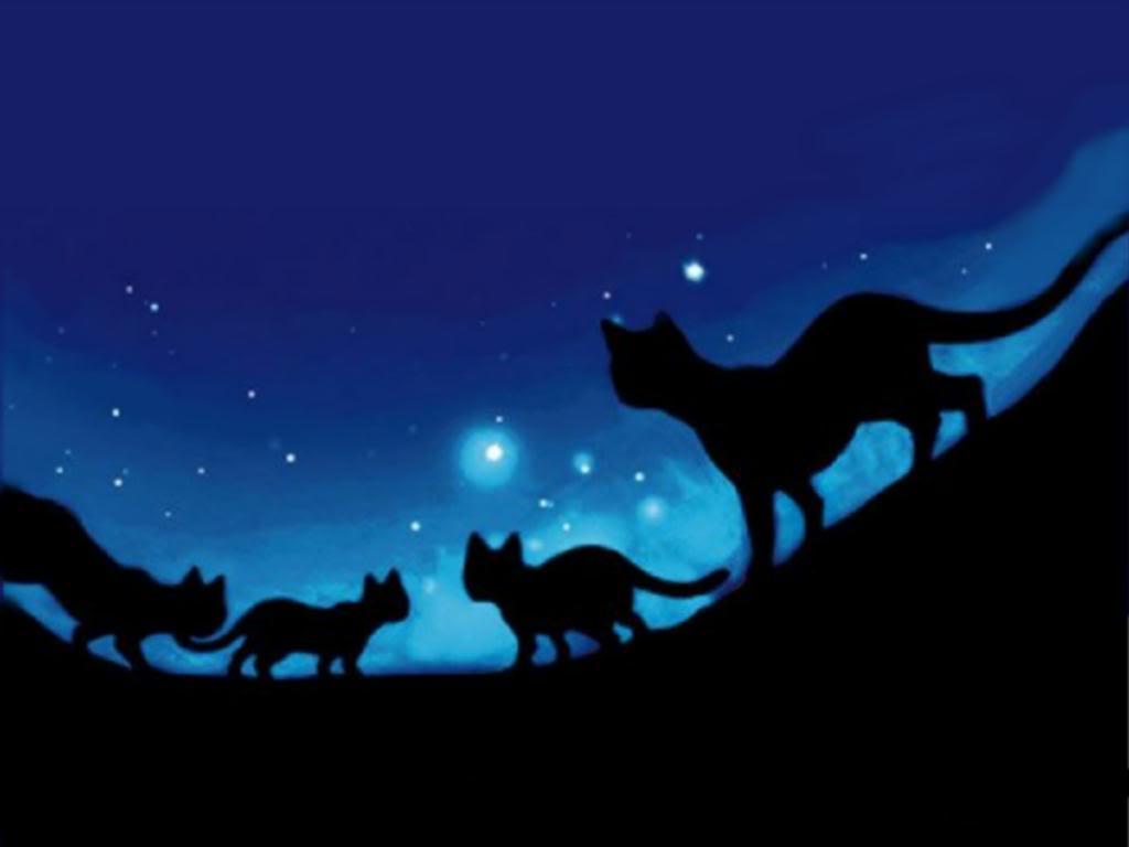 Silverpelt Warrior Cats