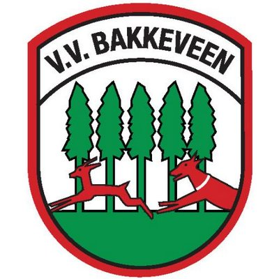 The Voice of Bakkeveen: Een brief naar Dreft