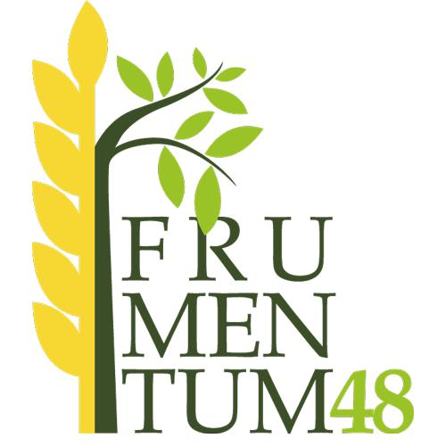 Resultat d'imatges de frumentum 48