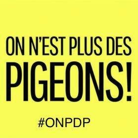 ONPDP