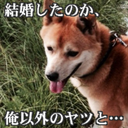 わんさんとせふぃたんの戯れ (@0329_tenten) Twitter