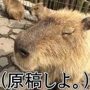 はるねこ@さらためD08 (@0106_i) Twitter