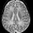 Brain Devpt Papers
