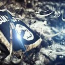 أسد العراق (@58b3a7b9eb81457) Twitter