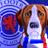 Rangers News Hound
