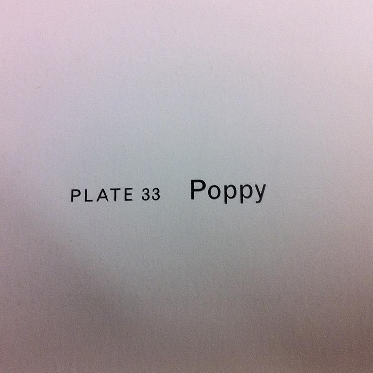 Poppy Bowers