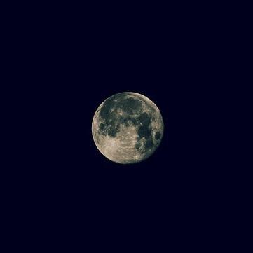 moonmurmur