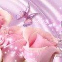 Pink Lady (@22pinkladies) Twitter