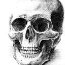 Steel bone (@02steel) Twitter