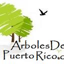 Arboles Puerto Rico (@arbolespr) Twitter