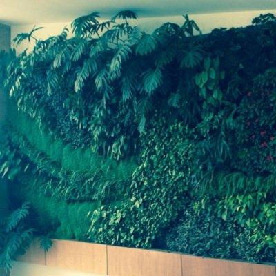 Jardines verticales kanasgarden twitter for Jardines verticales