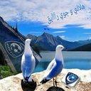 ابوغلا الشهري  (@055448alasm3ei1) Twitter