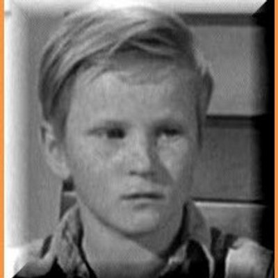 Walter Cunningham Jr in To Kill a Mockingbird  Shmoop