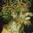 undersequoias
