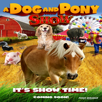 A Dog and Pony Show (@Adogandpony) | Twitter