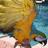 LucyBird - LucyBird