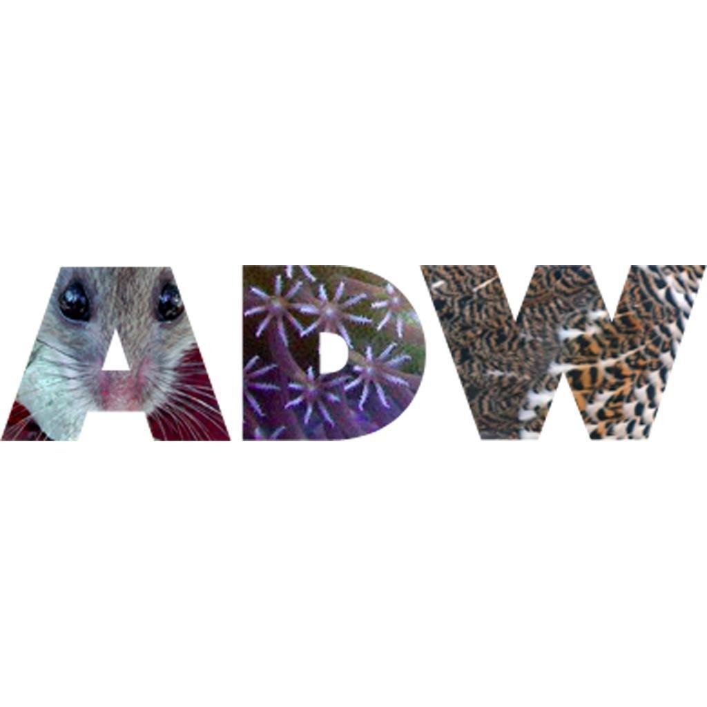 ADW logo