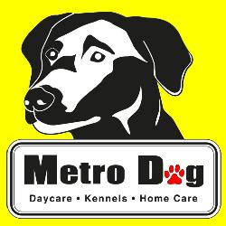 Metro Dog
