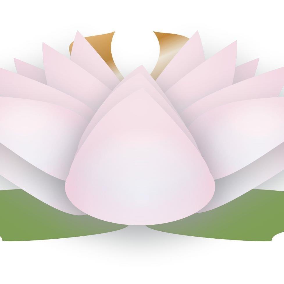 Lotus flower promos lfpromos twitter lotus flower promos izmirmasajfo