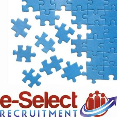 e recruitment thesis Thesis on recruitment and final report of thesis on recruitment and selection process presented by: (ie recruitment agencies.