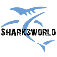 Rob Otto@Sharksworld | Social Profile