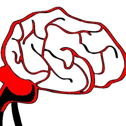 Brain Evolution News
