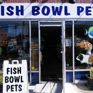 Fish bowl pets fishbowlpets twitter for Fish bowl pets