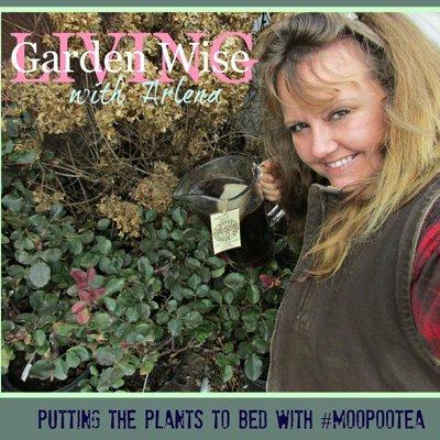 Superbe Garden Wise Arlena
