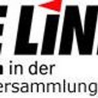 DIE LINKE. Bezirksverband Hamburg-Mitte