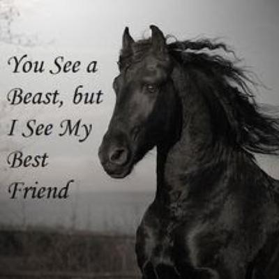 Horse Quotes On Twitter I Speak Spanish To God Italian To Women