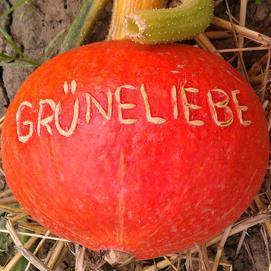 grüneliebe.de