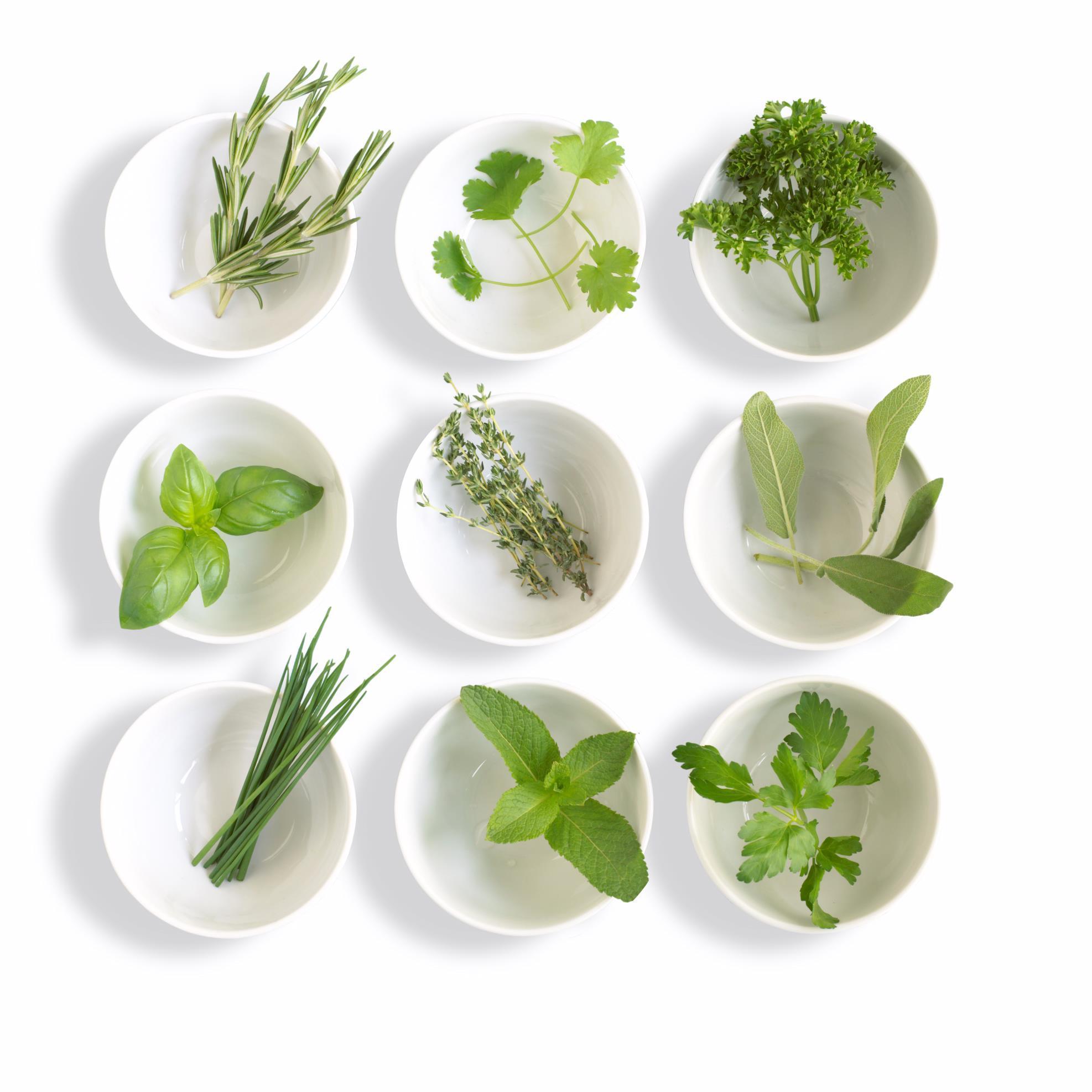 British Herbs (@britishherbs)