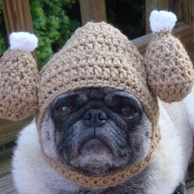 Pugs In Hats ( PugslnHats)  2a6c7907a65