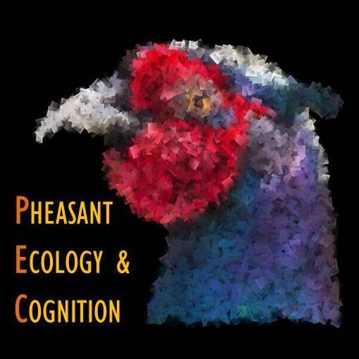 Pheasants@Exeter