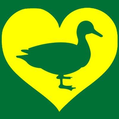 I love my ducks