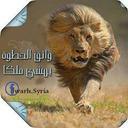 bin okail (@0100_eid) Twitter