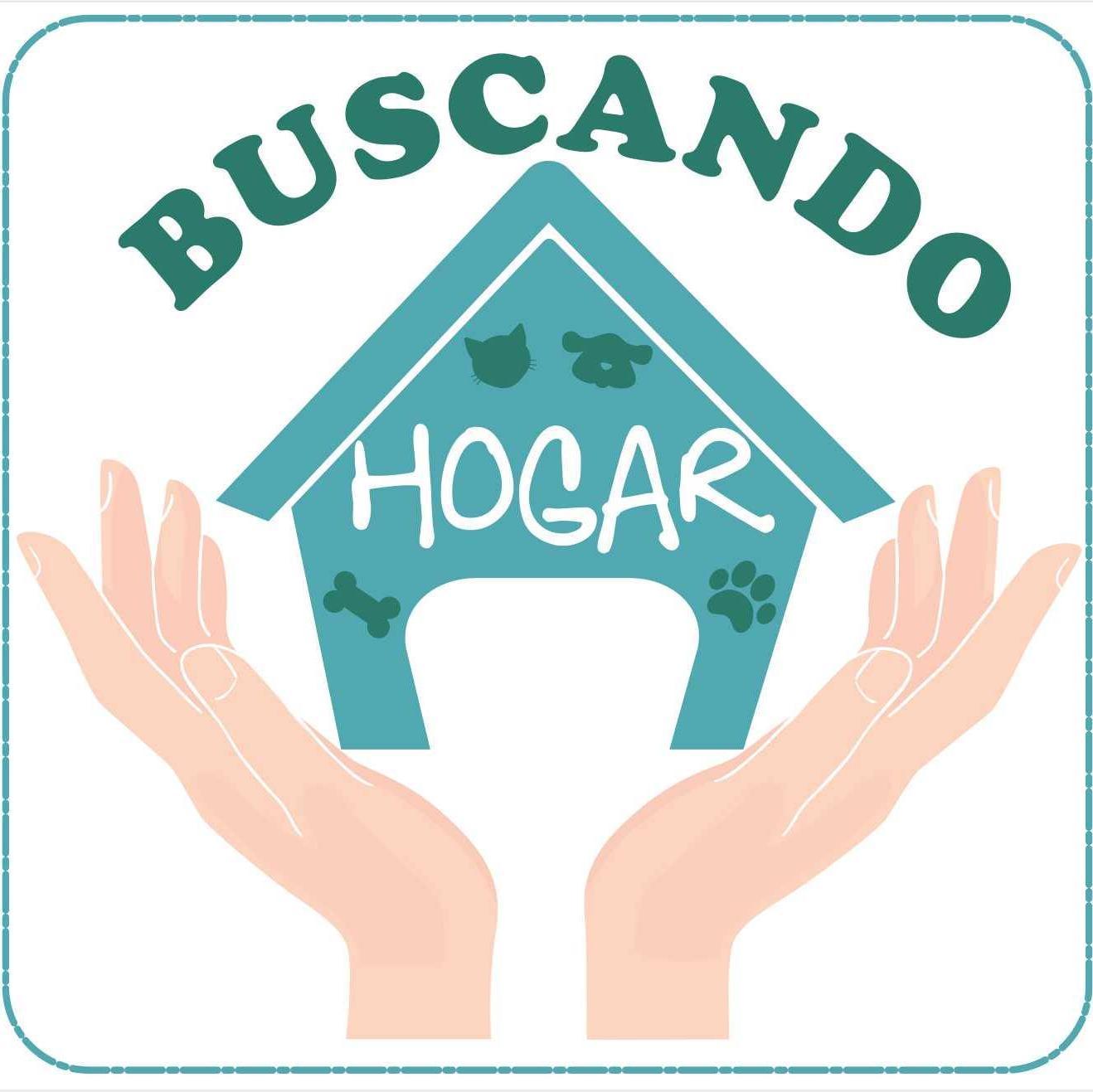 BucandoHogar_Adop