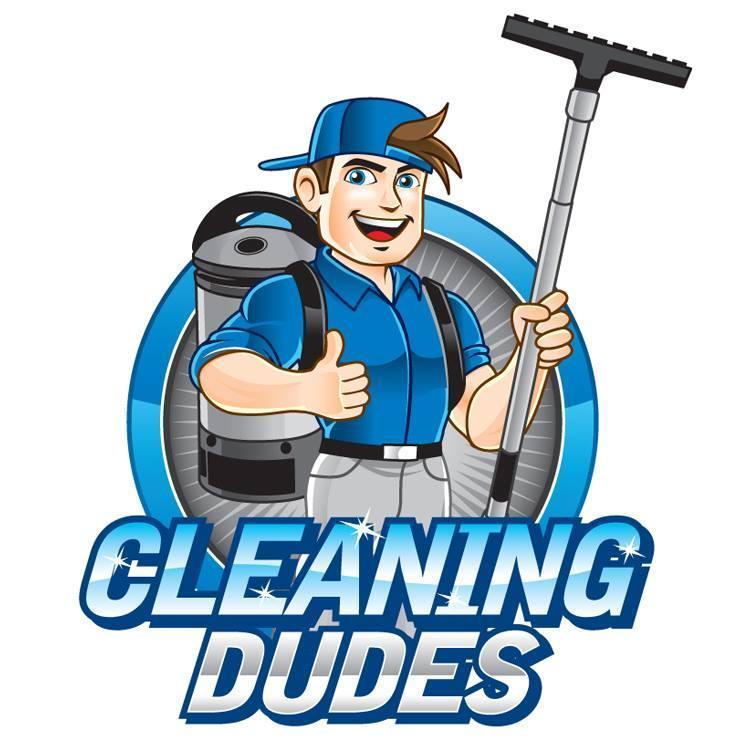 Dudes cleaning bikini photos 37